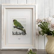 Kākāriki print display in frame