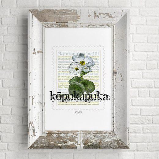 Kōpukapuka print on card. print display in frame