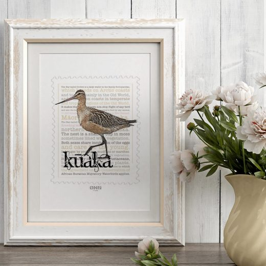 Kūaka print on card. print display in frame