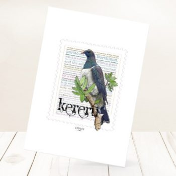 Kereru print on card