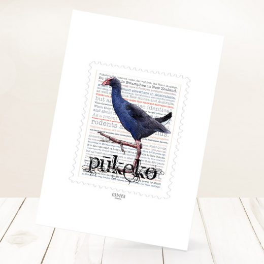 Pūkeko print on card.