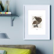 Brown Kiwi and Spotted Kiwi print on card. print display in frame on location