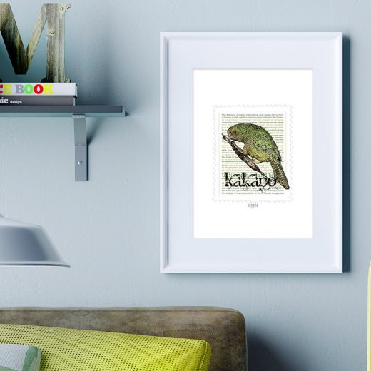 Kākāpō print display in frame on location