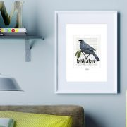 Kokako print on card. print display in frame on location