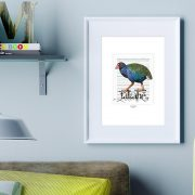 Takahe print on card. print display in frame on location