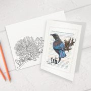 Tui print on greeting blank card with colour-in envelope.