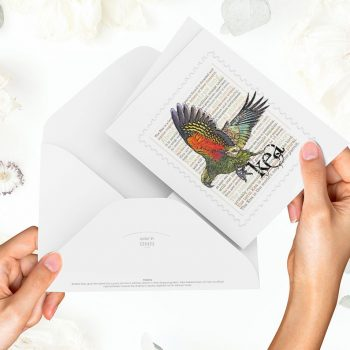 Kea print on greeting blank card with colour-in envelope.