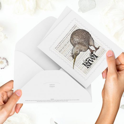 Kiwi print on greeting blank card with colour-in envelope.