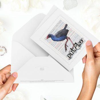 Pūkeko print on greeting blank card with colour-in envelope.