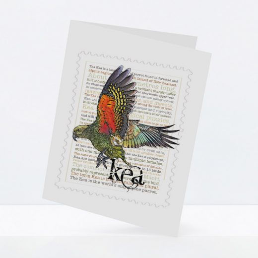 Kea print on greeting blank card.
